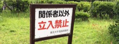 真円真珠発祥の地>東京大学へ突撃
